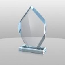 866 Victory Award